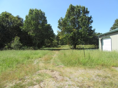 4924 County Road 2137, Stotts City, MO 65756 - #: 60108741