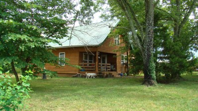 7216 County Road 665, Birch Tree, MO 65438 - #: 60116179