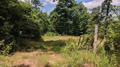 Private Road 2212, Washburn, MO 65772 - #: 60117132