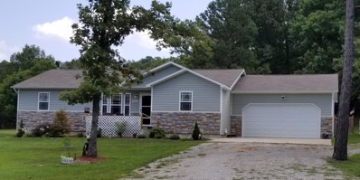 9642 Private Road 6685, West Plains, MO 65775 - #: 60118034
