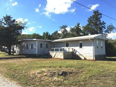98 Starlight Lane, Reeds Spring, MO 65737 - #: 60120796