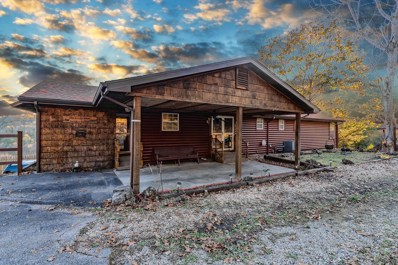 604 Mica Road, Kirbyville, MO 65679 - #: 60123708