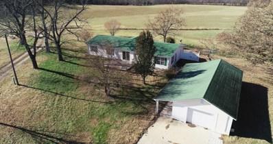 1552 Roberts Ridge, Kissee Mills, MO 65680 - #: 60124448