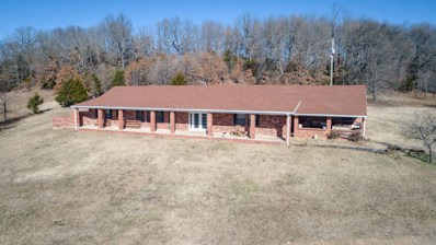 1606 Cr 421, Squires, MO 65755 - #: 60125591