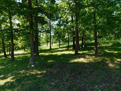 1288 Lucky Road, Mansfield, MO 65704 - #: 60126697