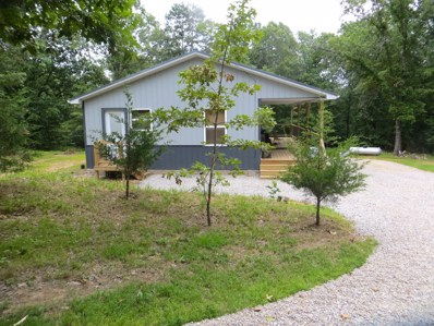 694 Country Road 224, Alton, MO 65606 - #: 60127661