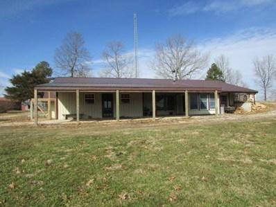 9872 County Road 634, Birch Tree, MO 65438 - #: 60128426