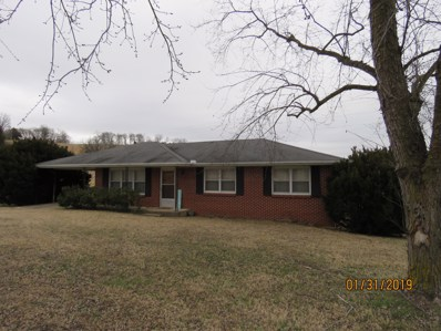 11844 State Highway 95, Thornfield, MO 65762 - #: 60128571