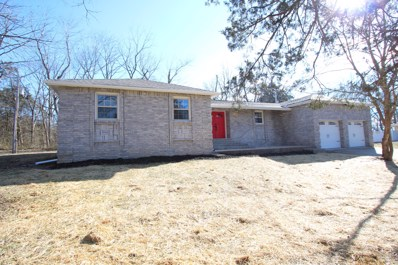 145 Country Hills Drive, Branson, MO 65616 - #: 60128910