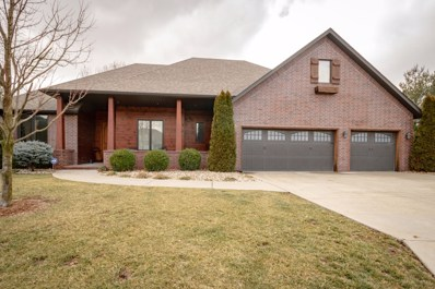 6519 S Meadowview Drive, Ozark, MO 65721 - #: 60129672