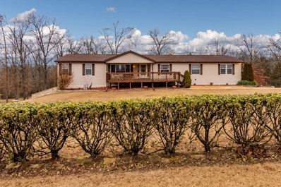 314 Lake Ranch Road, Kissee Mills, MO 65680 - #: 60131203
