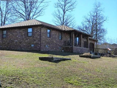 48 Turner, Gainesville, MO 65655 - #: 60131481