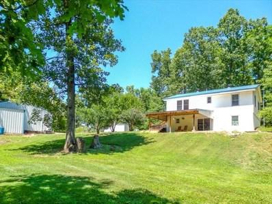 382 County Road 618, Isabella, MO 65676 - #: 60131544