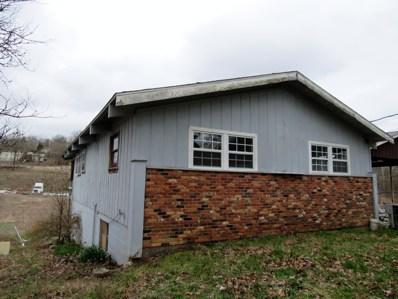484 Buttercup Drive, Branson, MO 65616 - #: 60132320