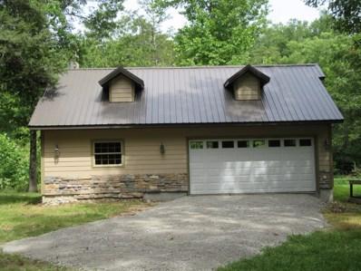 216 Lake Point Road, Kissee Mills, MO 65680 - #: 60132395