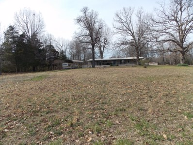 6695 Private Road 9940, West Plains, MO 65775 - #: 60133243