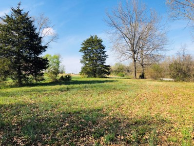 State Highway 37, Seligman, MO 65745 - #: 60133297