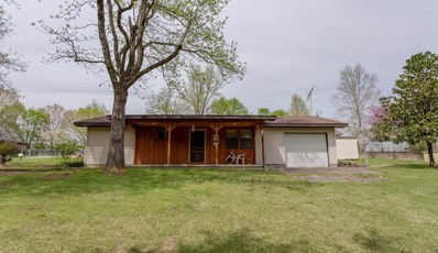 264 Beaver Creek Drive, Kissee Mills, MO 65680 - #: 60133711