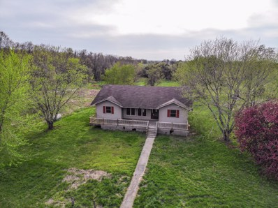 5811 Lawrence County Avenue, La Russell, MO 64848 - #: 60134662