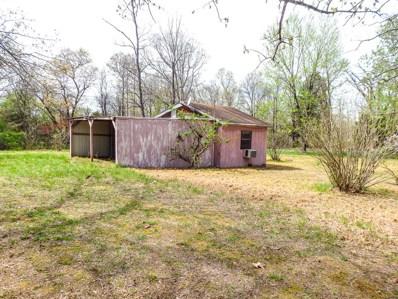 County Road 621, Isabella, MO 65676 - #: 60135125