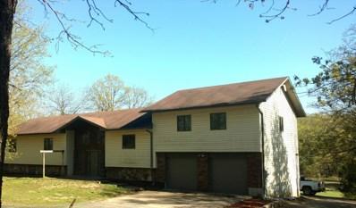 315 Brace Hill Road, Kissee Mills, MO 65680 - #: 60135319