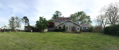 790 County Road 343, West Plains, MO 65775 - #: 60135352