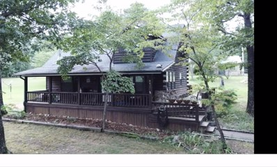 9437 Private Road 1405, Peace Valley, MO 65788 - #: 60136233