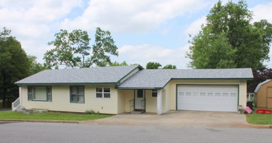 704 Texas Avenue, West Plains, MO 65775 - #: 60137960