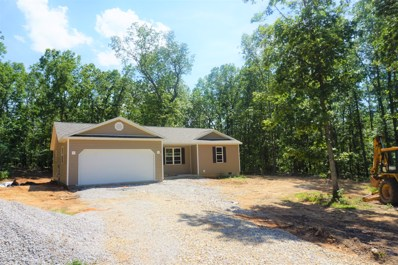 Private Road 6385, West Plains, MO 65775 - #: 60138428
