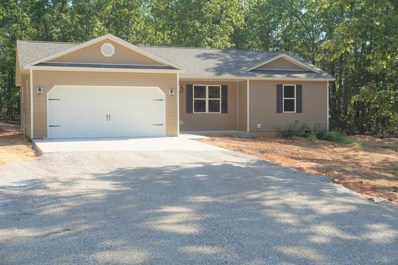 Private Road 6385, West Plains, MO 65775 - #: 60138430