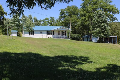 5039 County Road 950, Squires, MO 65755 - #: 60140465