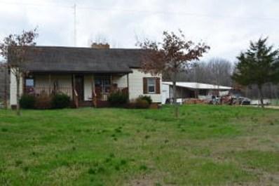 979 County Road 301, Alton, MO 65606 - #: 60143927