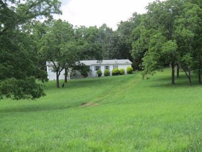 7813 County Road 3850, Peace Valley, MO 65788 - #: 60144563