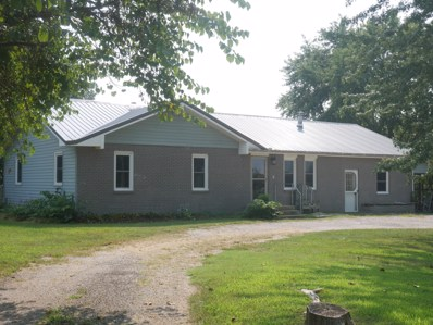 210 Snooks Road, Exeter, MO 65647 - #: 60146709