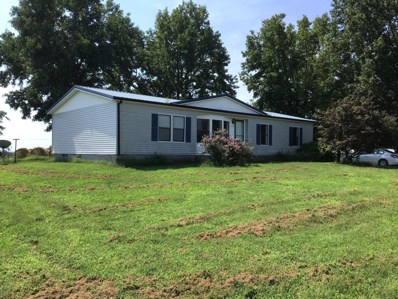 736 Fletcher Ridge Road, Seligman, MO 65745 - #: 60146817