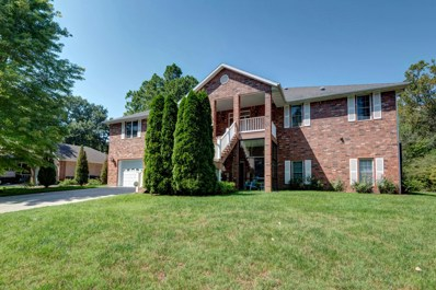440 Foggy River Road, Hollister, MO 65672 - #: 60146846