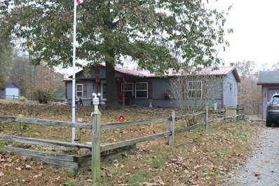 333 Osage Lane, Pineville, MO 64856 - #: 60151352