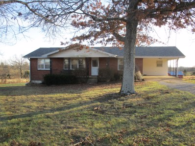4252 State Hwy K, West Plains, MO 65775 - #: 60152717