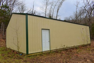 20900 E State Hwy 76, Taneyville, MO 65759 - #: 60154554