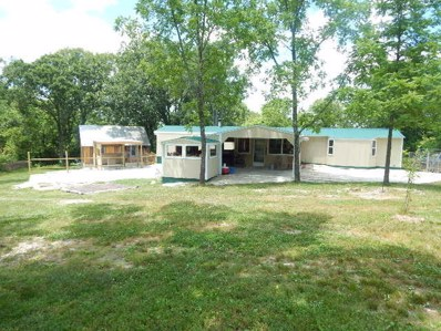 1884 County Road N-316, Squires, MO 65755 - #: 60166778