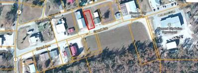 Grand Avenue, Diamond City, AR 72644 - #: 60174812