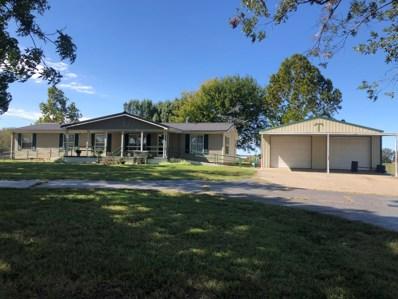 11173 Farm Road 1015, Purdy, MO 65734 - #: 60175047