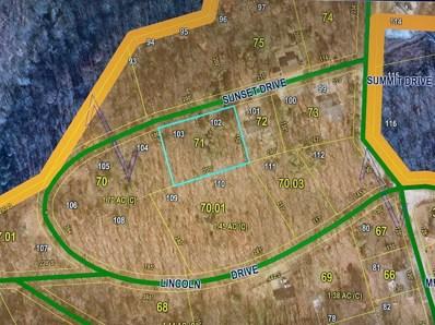 Sunset Drive Unit Lot 102>, Noel, MO 64854 - #: 60176099