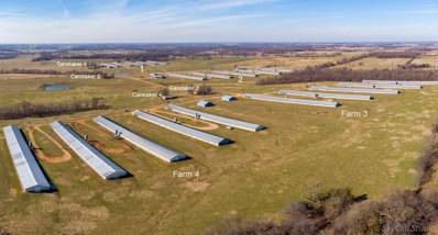 6234 Farm Road 2125, Purdy, MO 65734 - #: 60182084