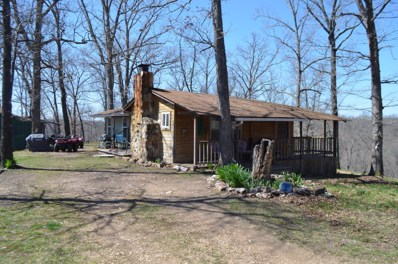S Marshfield Road, Bruner, MO 65620 - #: 60186302