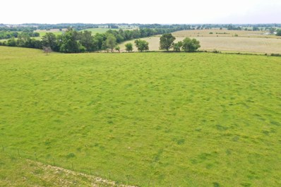 Tract 1 State Highway Oo, Sparta, MO 65753 - #: 60191940
