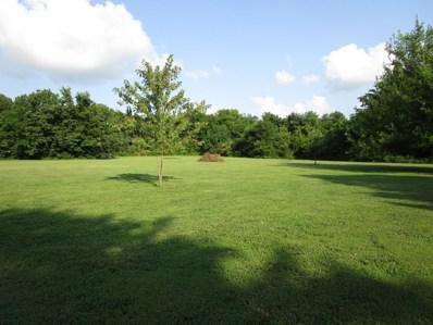 County Lane 198, Carterville, MO 64835 - #: 60200408