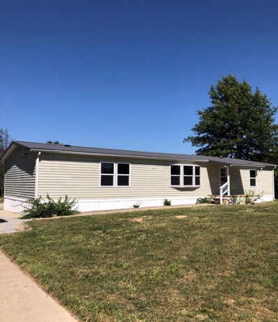 29 Forest View Drive, Seymour, MO 65746 - #: 60201914