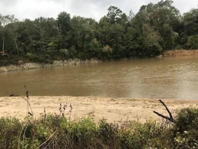 River Loop Rd., Beaumont, MS 39423 - #: 115354