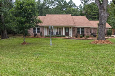 12 Green Acres Rd., Sumrall, MS 39482 - #: 118139
